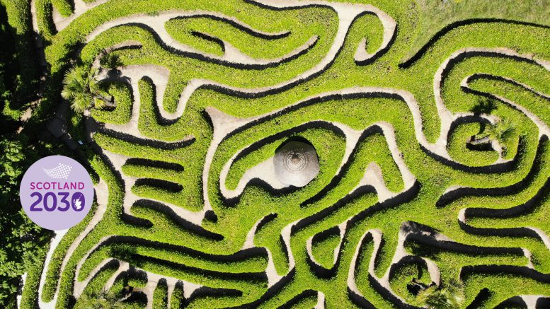 Maze from above