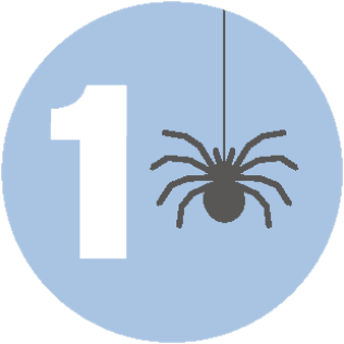 Number 1 next to a spider